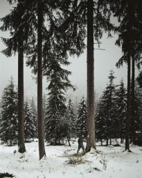 Mühe Andreas - Soldat, Obersalzberg series (2012)